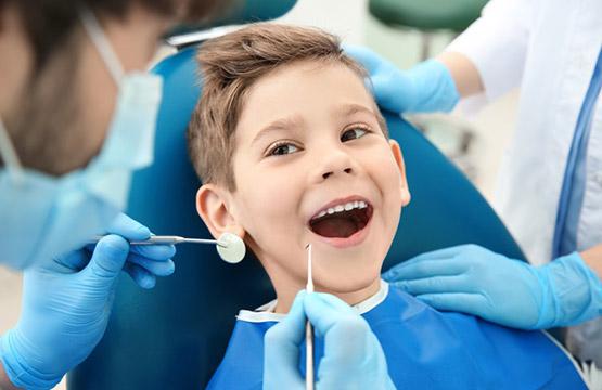 Chsp Dental Care Plan